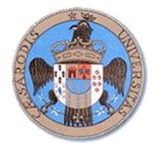 Logo Cesarò