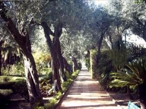 Taormina27