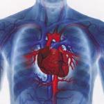 cuore rischio
