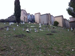 enna-cimitero-4