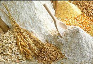 grano e pasta